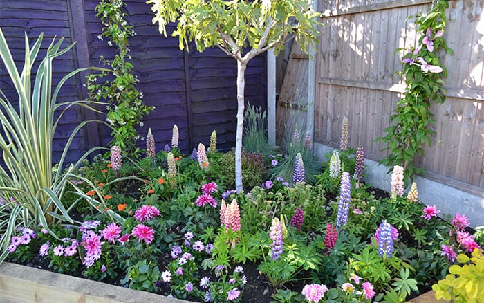 Love your garden episode 5 how to get the colourful look for Love your garden designs
