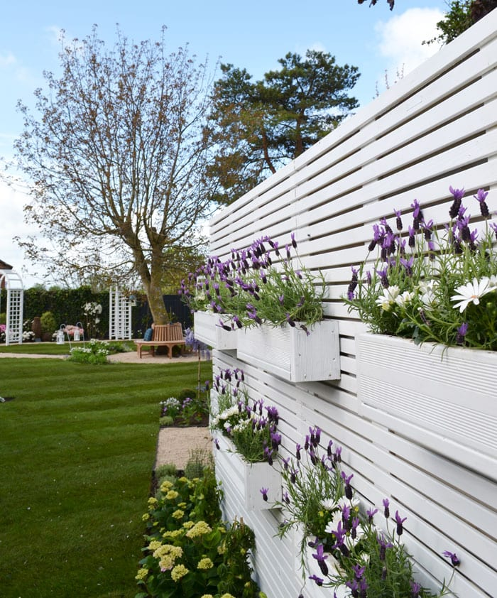 love-your-garden-screen-lavender-window-boxes-episode-two