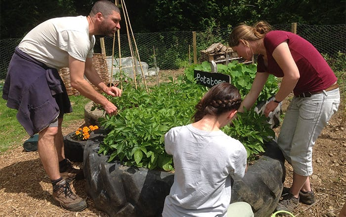 boot-up-cornwall-community-garden-campaign-winners