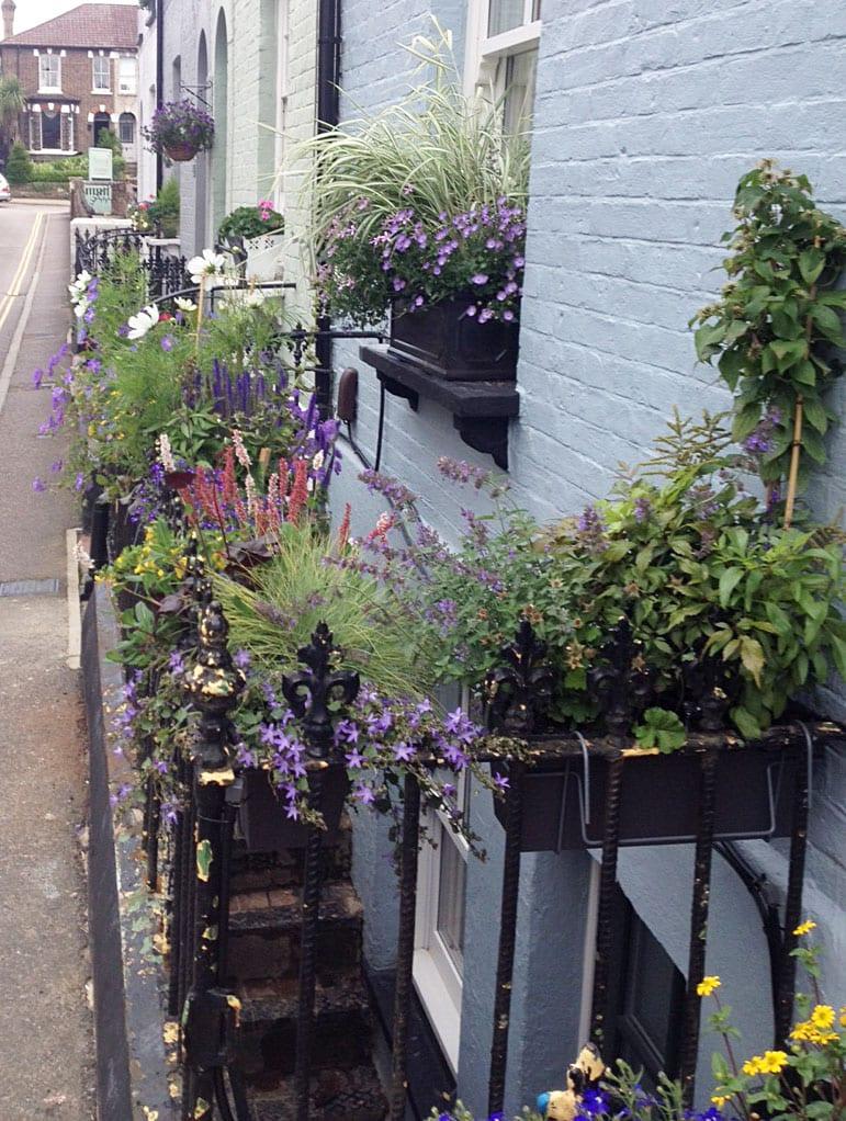 street-bedford-road-community-gardening-campaign-winners
