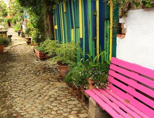 Cultivation Street 2015: Regional front garden winners