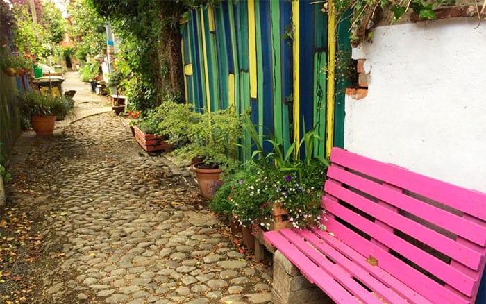 wildflower-alley-photo-winner-cultivation-street-2015-community-gardening-campaign