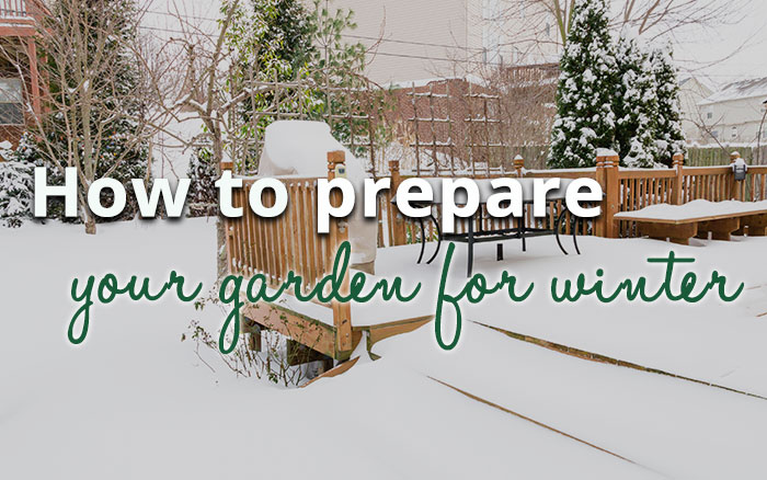 How-to-prepare-your-garden-for-winter