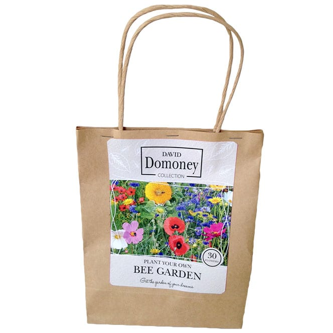 Plant Your Own Bee Garden Seed Mix - David Domoney for John Lewis collection