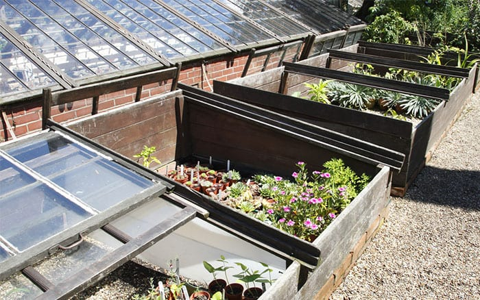 cold-frames-protect-plants-under-glass
