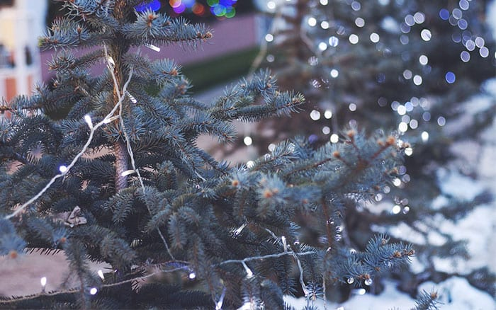 Christmas Lights That Run On Batteries