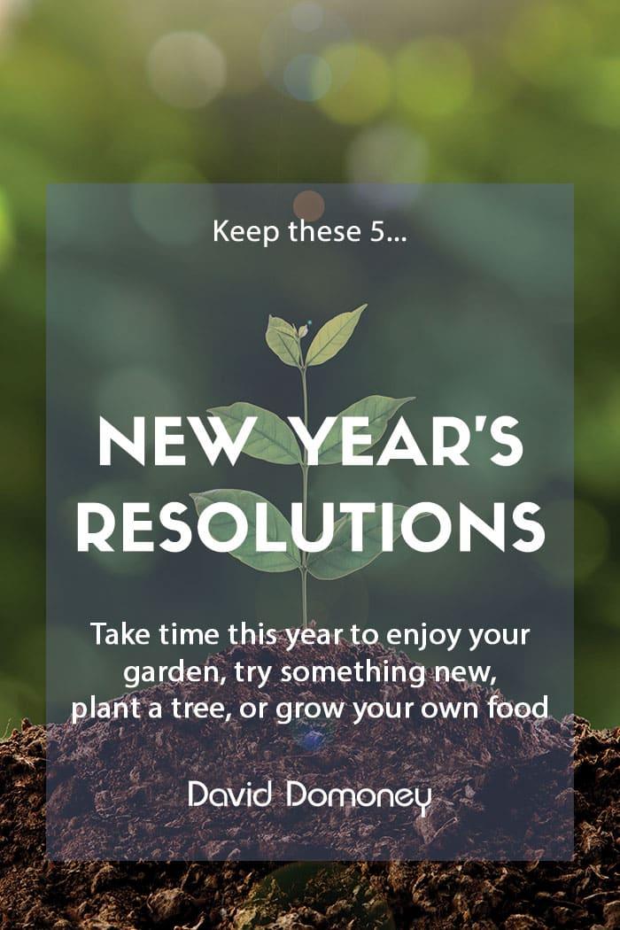 Gardening New Years resolutions