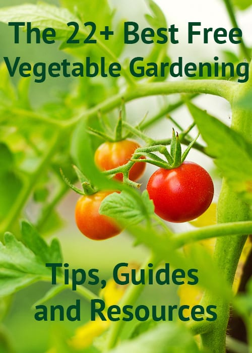 The 22 best free grow your own vegetable garden resources