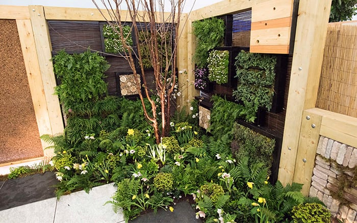 Urban contemporary woodland garden with spring planting from Askham Bryan College at the Young Gardeners of the Year competition - see all the design ideas