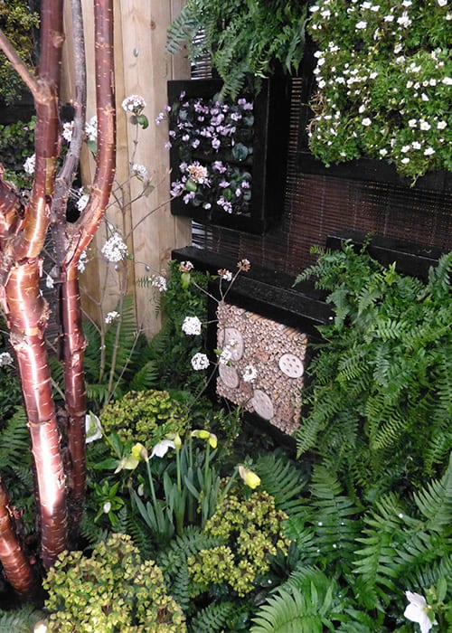 Green wall planters and insect hotels adorn a wall in Askham Bryan College's contemporary woodland garden