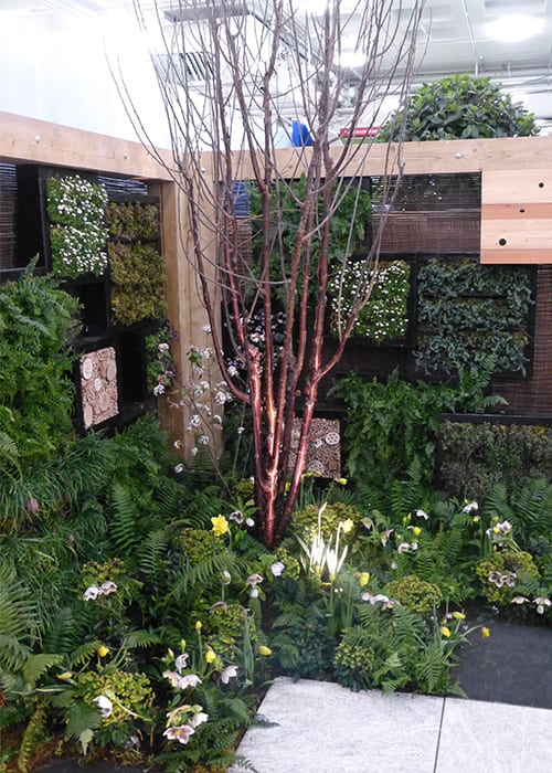 Best small garden design ideas from the Young Gardeners compeion on shade garden designs, small rock garden ideas, private garden designs, meditation garden designs, small greenhouse designs,