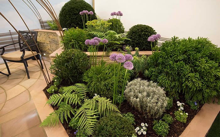 Chichester College created this stunning show garden for the Young Gardeners of the Year Competition, including these architectural and spherical planting schemes