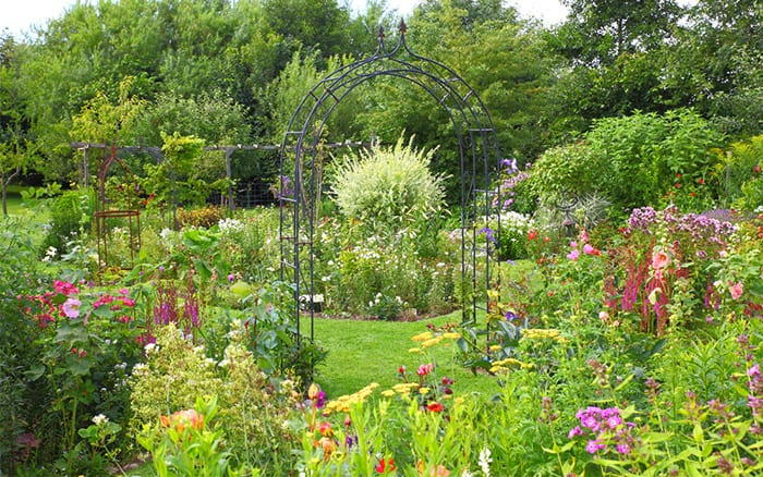 garden-arch-summer-flowering-garden-design-climbers-on-arch