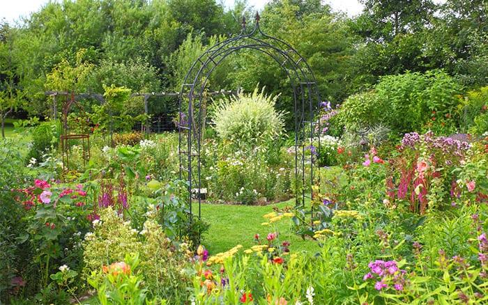 garden-arch-summer-flowering-garden-design-climbers-on-arch