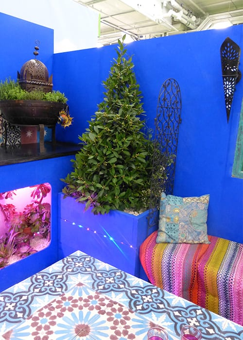 Shuttleworth College show garden inspired by the colours of Morocco for the Young Gardeners of the Year 2016 Competition