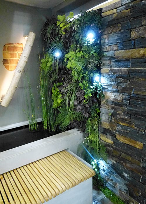 Green wall feature with lighting over a water feature in Writtle College's show garden at the Ideal Home Show