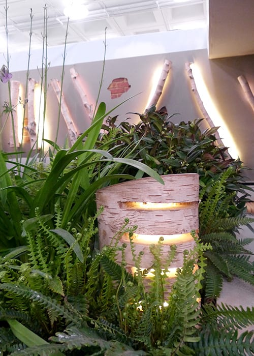 Birch log lighting on walls and in flower beds in the Writtle College Basement Garden show garden at the Young Gardeners of the Year Competition 2016