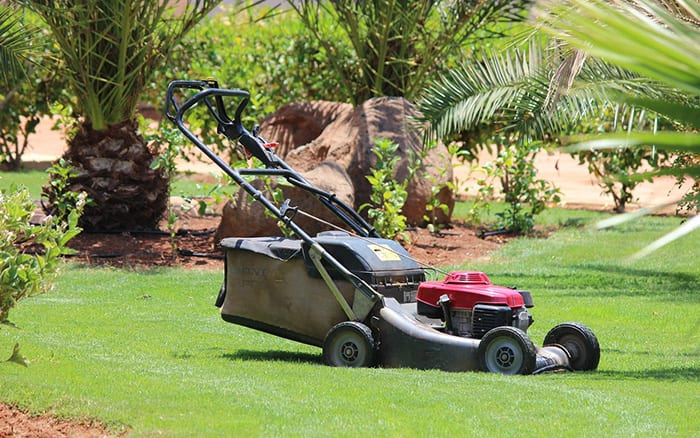 lawn-mower-buying-guide-how-to-choose-a-lawnmower-petrol-or-electric