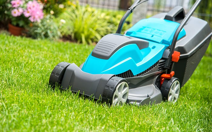 Lawnmower Buying Guide How To Choose The Best Lawn Mower