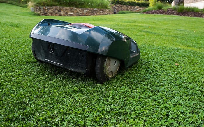 lawnmower-robot-grass-cutting-lawn-mower-buying-guide