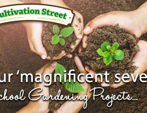 Our ' Magnificent Seven' School Gardening Projects