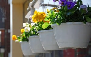 Solid hanging baskets a