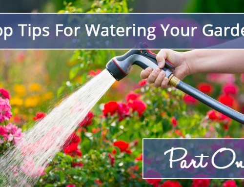 Keeping your garden well watered this summer
