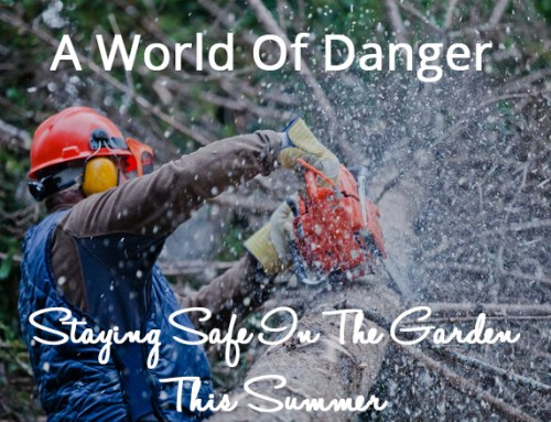 A World Of Danger: Staying Safe In The Garden