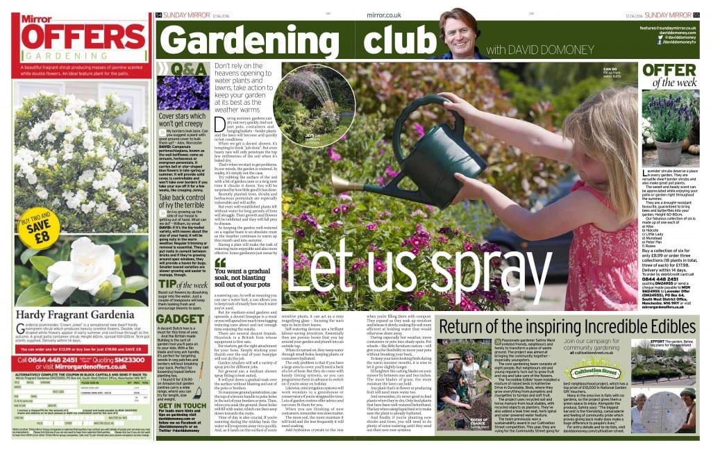 Wonderful Press Clippings  David Domoney With Inspiring   The Sunday Mirror Return Of The Inspiring Incredible Edibles   With Endearing John Deere Garden Tractor Also Water Garden Ideas In Addition Beauty Works Welwyn Garden City And Busch Gardens Parking Price As Well As Garden Centres Maidstone Additionally Sainsburys Garden From Daviddomoneycom With   Inspiring Press Clippings  David Domoney With Endearing   The Sunday Mirror Return Of The Inspiring Incredible Edibles   And Wonderful John Deere Garden Tractor Also Water Garden Ideas In Addition Beauty Works Welwyn Garden City From Daviddomoneycom