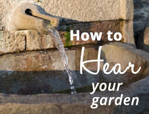 How To Hear Your Garden