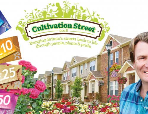 2016 Cultivation Street Specialist Categories Winners Announced!!