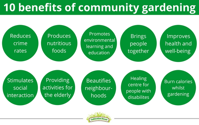 How to set up a community garden David Domoney
