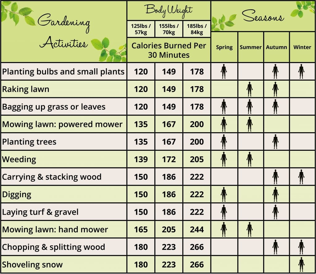 Gardening is a great way to lose weight and keep fit - David