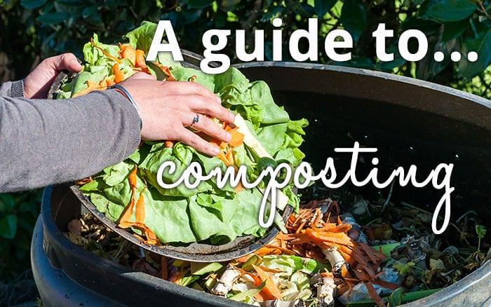 compost-header