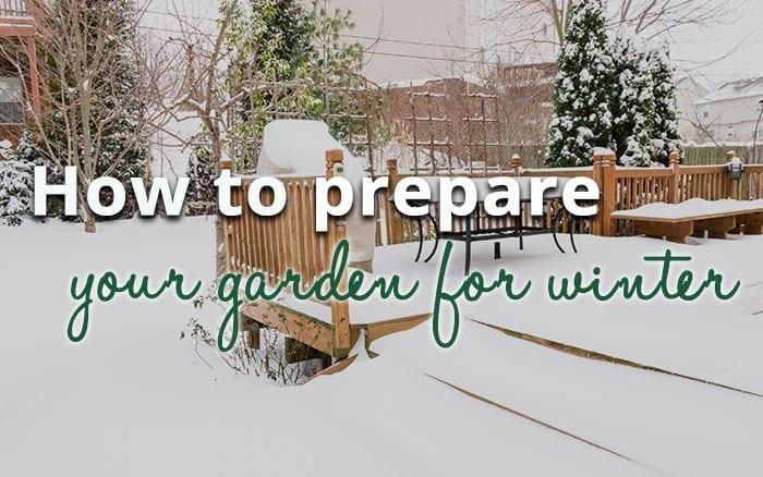 How to prepare your garden for winter david domoney - Prepare garden winter ...