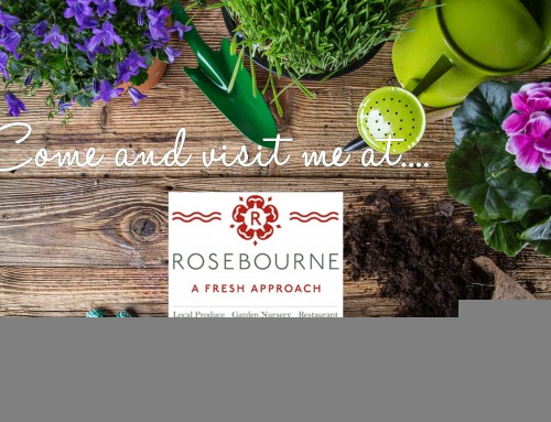 Come and visit me at Rosebourne