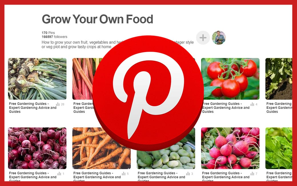 Pinterest grow your own food