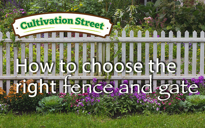 Seductive How To Plant A Herbaceous Perennial Border  David Domoney With Entrancing Front Garden Guide Choosing The Right Garden Fence And Gate With Amazing English Country Garden Wedding Also Garden Tongs In Addition Flower Garden Designs And Layouts And Gardens Buildings Direct As Well As Garden Home Additionally Dorking Garden Centre From Daviddomoneycom With   Amazing How To Plant A Herbaceous Perennial Border  David Domoney With Seductive Gardens Buildings Direct As Well As Garden Home Additionally Dorking Garden Centre And Entrancing Front Garden Guide Choosing The Right Garden Fence And Gate Via Daviddomoneycom