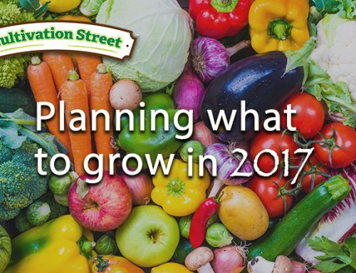 Planning what to grow for your garden project…