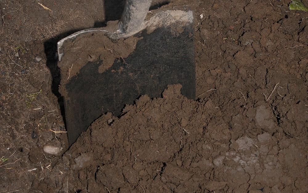 digging-soil