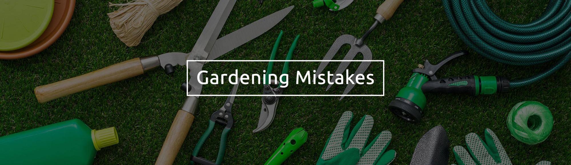 gardening-mistakes