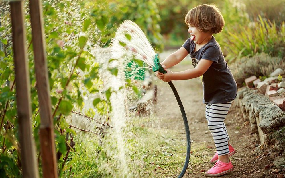 summer-watering