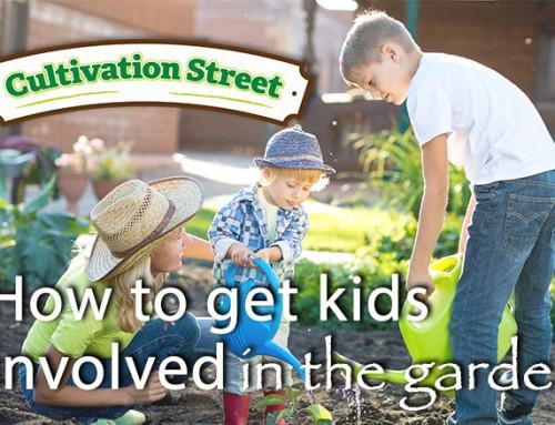 Great ideas for kids gardening