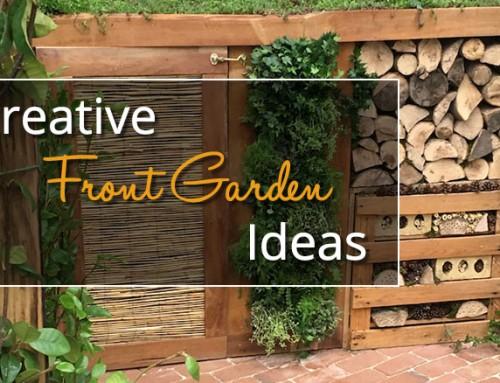 Creative Front Garden Ideas & Inspiration