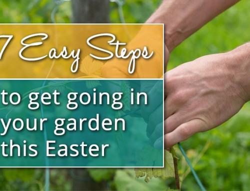 Easter Gardening Projects