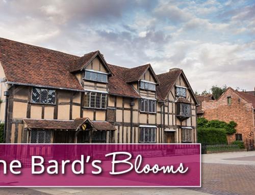 William Shakespeare's Blooms