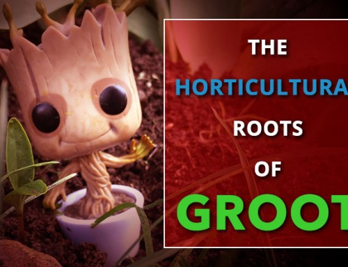 The Horticultural Roots of Groot