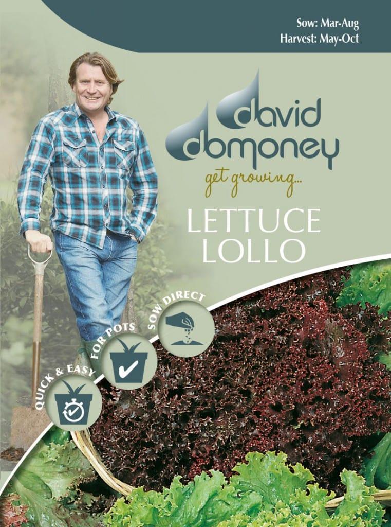 David Domoney Get Growing Lettuce Loose Leaf Seeds