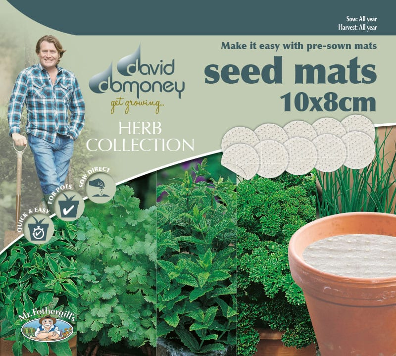 Grow your own Herb Collection