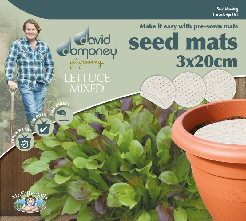 Grow your own Mat Lettuce